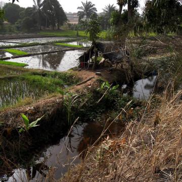 Carnet de terrain : Les bas-fonds de Bouaké