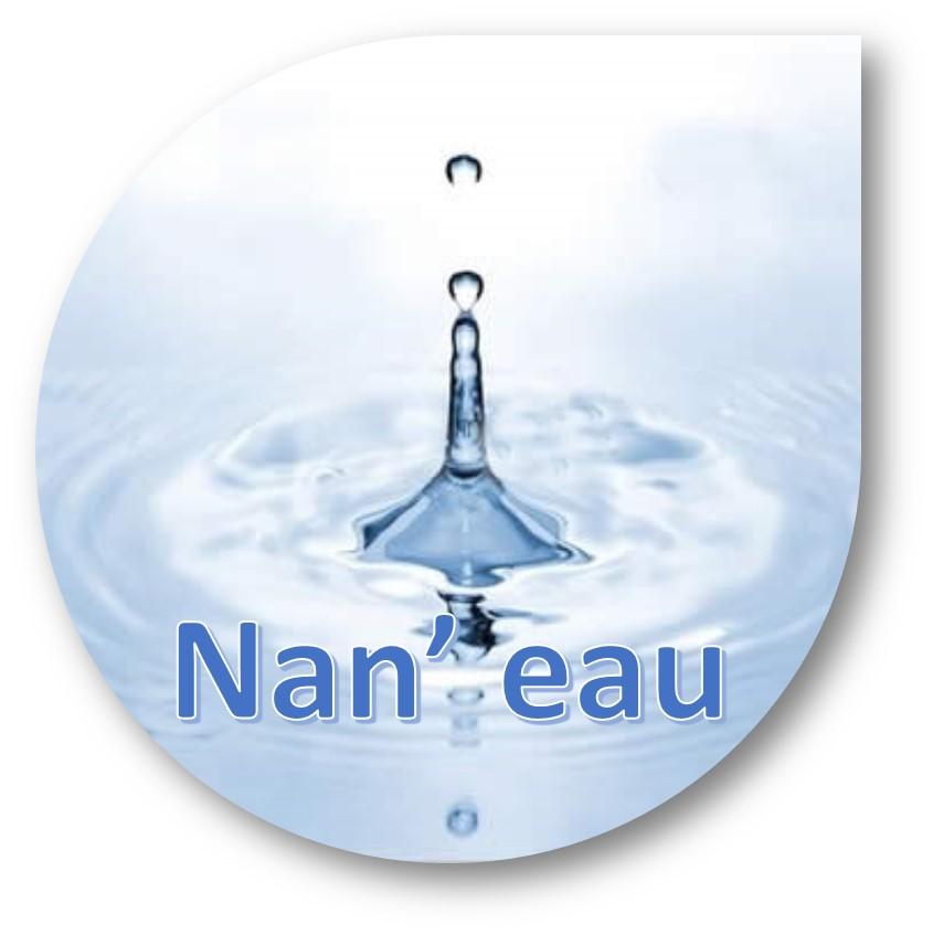 Nanos et eau : Consultation d'acteurs de l'eau, conduite par Avicenn avec le soutien de l'ONEMA et du Ministère de l'Environnement