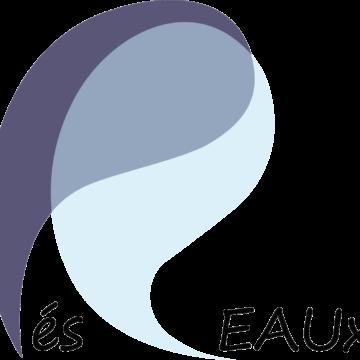 École thématique Water and Society – Eau et Société : une approche spatio-temporelle pour des études interdisciplinaires intégrées