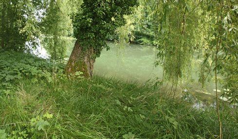 Journée mondiale des zones humides -02/02/2017- Soirée-débat à Paris