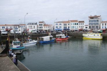Carnet de terrain : «La petite pêche côtière à l'île d'Yeu : état des lieux»