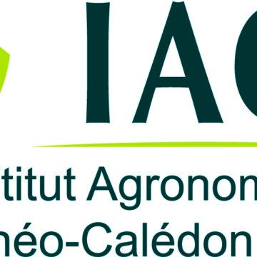 Appel à candidature pour un poste d'assistant.e de recherche en VSC à l'Institut Agronomique néo-Calédonien – avant le 15/11/18