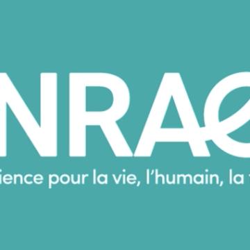 Offre de stage M2 – analyse des pratiques domestiques de consommation d'eau potable en Gironde, et leurs changements